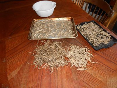 WILD WV GINSENG AND YELLOW ROOTS